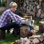 Holzspalter Test und Vergleich