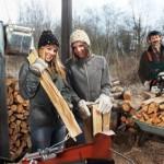 Holzspalter Test